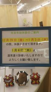 DSC_0425